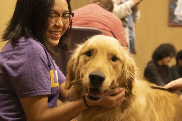 therapydogs_2019-011